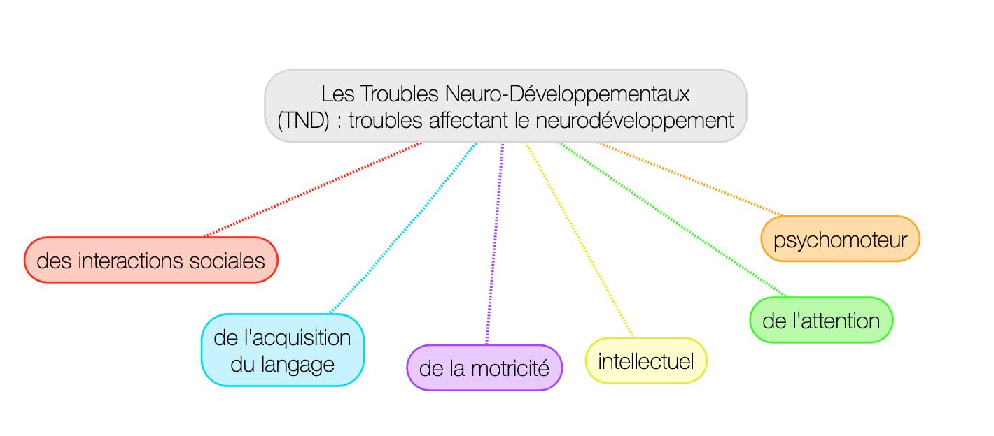 Troubles neuro développementaux
